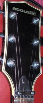 Acoustic brand guitar headstock