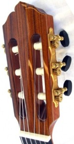 Ziata guitar headstock